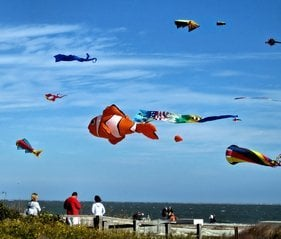 Kites on Coligny Beach